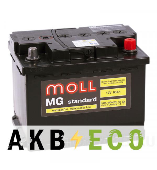 Автомобильный аккумулятор Moll MG Standard 60R 540A 242x175x190
