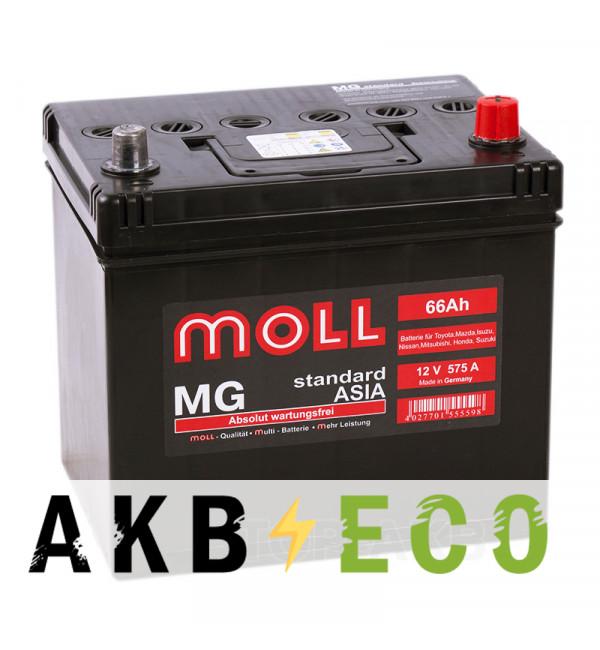 Автомобильный аккумулятор Moll MG Standard Asia 66R 575A 220x164x220