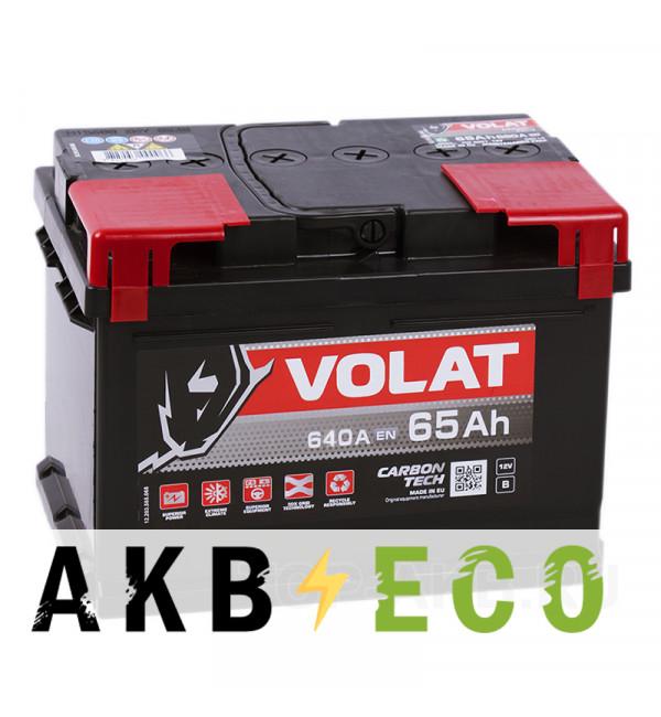 Автомобильный аккумулятор Volat 65R низкий (640A 242x175x175)