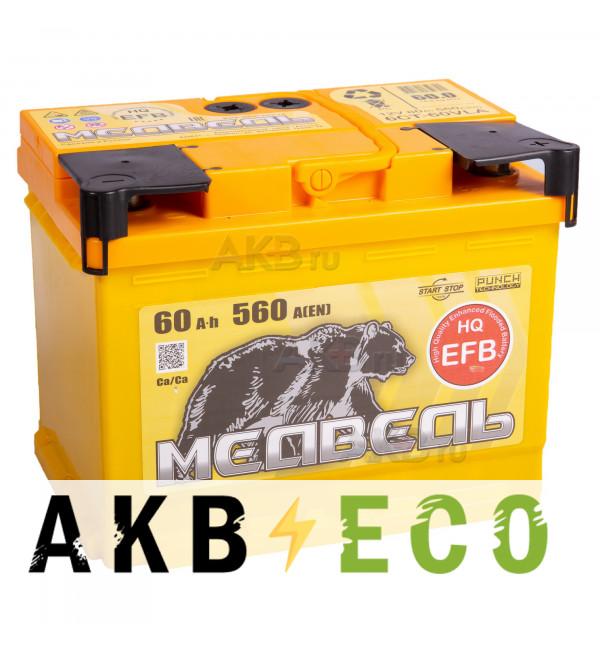 Автомобильный аккумулятор Тюменский медведь EFB 60 Ач обр. пол. 560A (242x175x190)