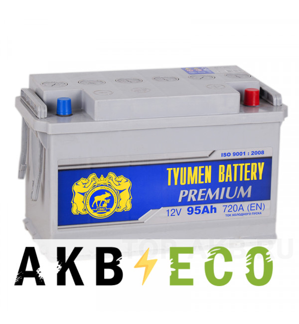 Автомобильный аккумулятор Tyumen Battery Premium 95 Ач обр. пол. 720A (345x175x213)
