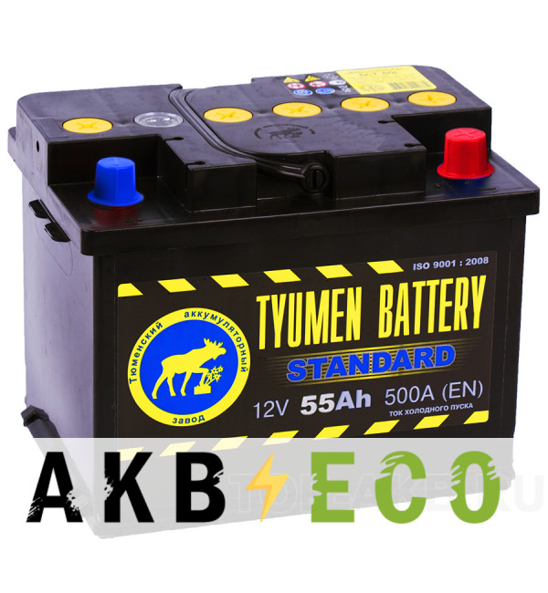 Автомобильный аккумулятор Tyumen Battery Standard 55 Ач обр. пол. 500A (242x175x190)