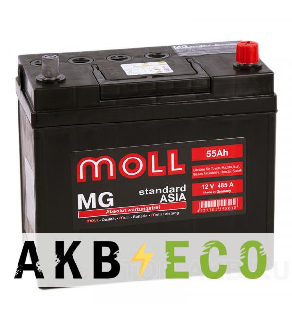 Автомобильный аккумулятор Moll MG Standard Asia 65B24LS (55R 485A 229x120x220)