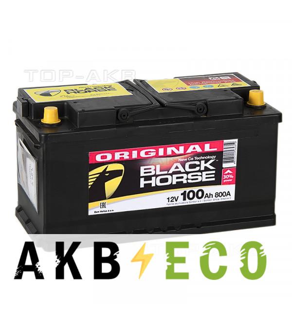 Автомобильный аккумулятор Black Horse 100R 800A 353x175x190