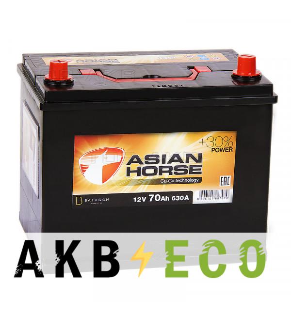 Автомобильный аккумулятор Asian Horse 70L 630A 260x173x225