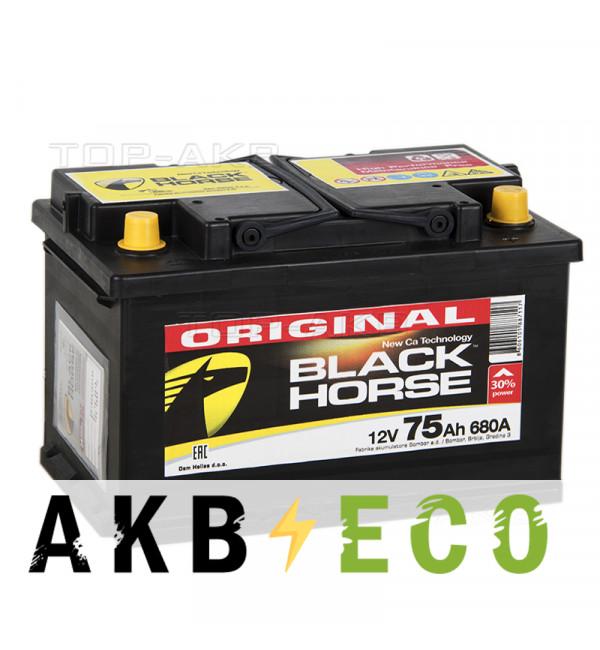Автомобильный аккумулятор Black Horse 75R 700A 278x175x175 (низкий)