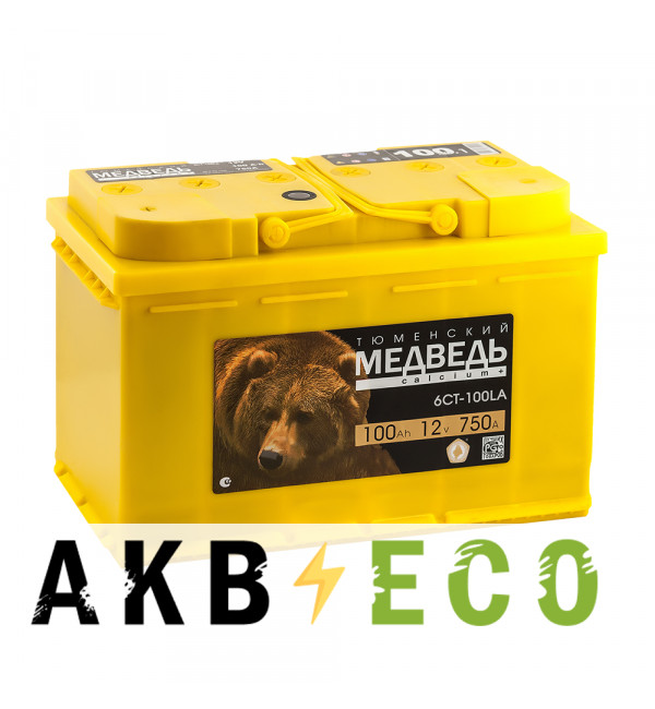 Автомобильный аккумулятор Тюменский медведь Calcium Plus 100 Ач прям. пол. 800A (353x175x190) гибридный