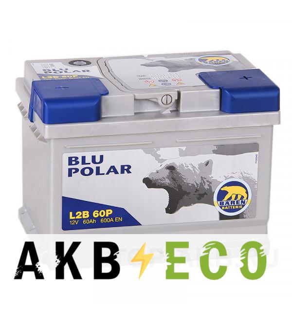 Автомобильный аккумулятор Baren Polar Blu 60R низкий 600A 242x175x175 (L2B60P)