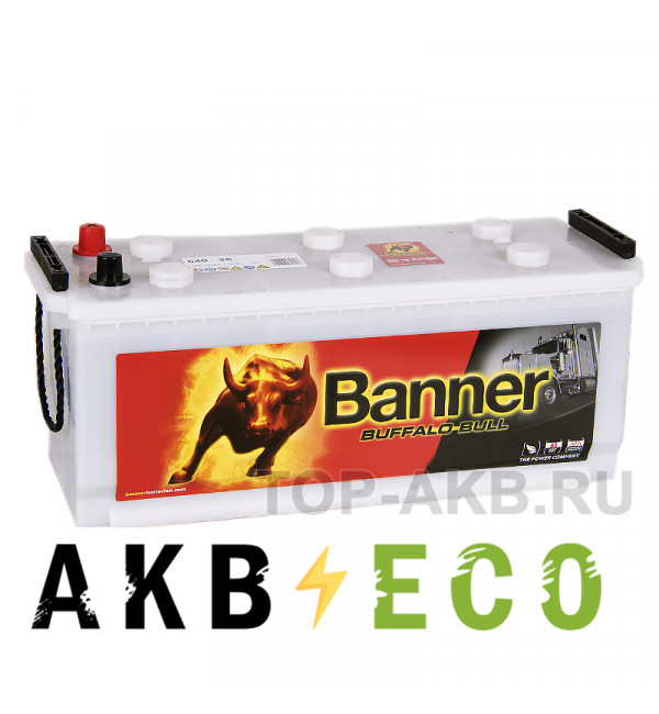Автомобильный аккумулятор BANNER Buffalo Bull (640 35) 140 евро 760A 513x189x223