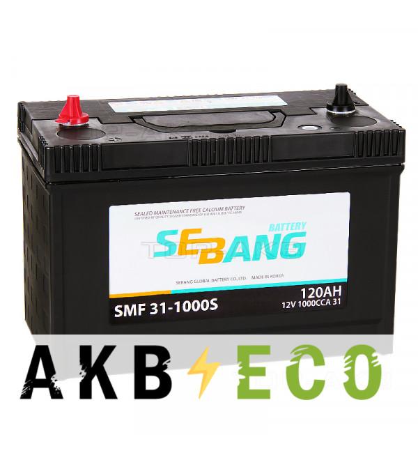 Автомобильный аккумулятор Sebang 31-1000S 120 Ач прямая пол. 930А (330x173x240) клеммы под гайку