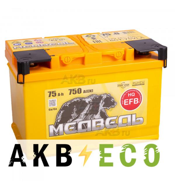 Автомобильный аккумулятор Тюменский медведь EFB 75 Ач обр. пол. 750A (278x175x190)
