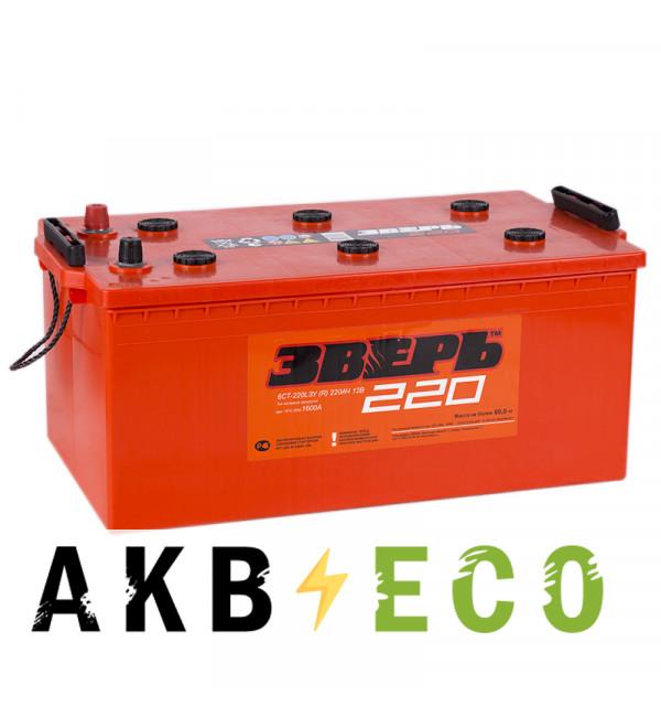 Автомобильный аккумулятор Зверь 220 евро 1600A 518x273x240