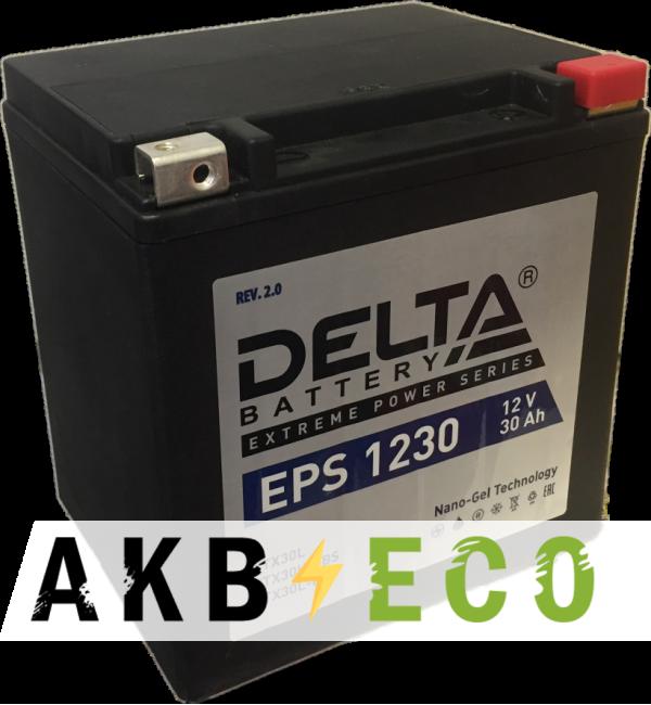Мотоциклетный аккумулятор Delta EPS 1230, 12V 30Ah, 400А (166x130x175) YTX30HL-BS, YTX30L-B, YTX30L обратная пол.