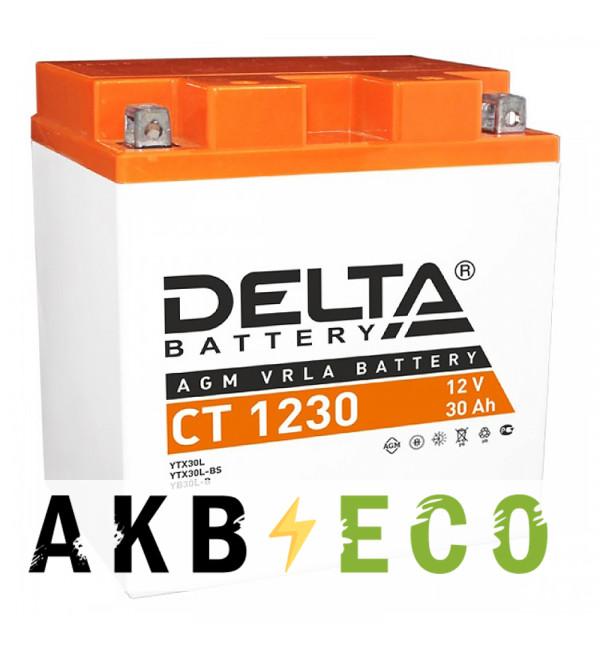 Мотоциклетный аккумулятор Delta CT 1230, 12V 30Ah, 300А (168x126x175) YTX30L-BS, YB30L-B, YTX30L обратная пол.