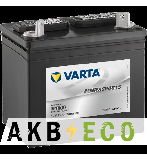 Мотоциклетный аккумулятор VARTA Powersports Gardening U1R(9) 12V 22Ah 340А (196x131x183) обр. пол. 522 451 034